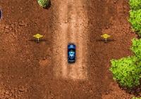 conduite, course, véhicule, pilotage, circuit, rallye, voiture