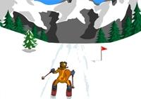 Slalom, ski, neige, hiver, sports, lapin, castor, skieur, slalomeur