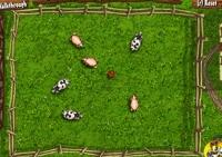 poules, vaches, cochons explosifs, bombes, ferme