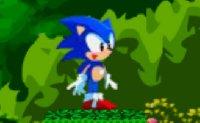 Sonic, séga, hedgehog, saut