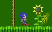 Sonic, plateforme, hedgehog