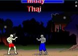 arts martiaux, muay thai, combat