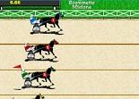 chevaux, pari, bookmaker