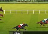sport, chevaux, course hyppique, équitation
