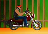 motard, moto, harley, cascade, bike
