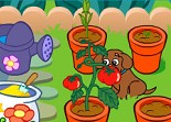 Dora, jardinage, agriculture,légume, fleur