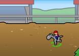 cheval, équitation, gestion de chevaux