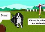 chien, dressage, éducation canine