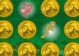 Go Diego Go ! Safari Memory