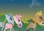 course, chevaux, saut d'obstacles