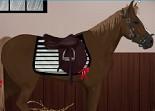 cheval, habillage