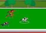 cheval, course hyppique, équitation