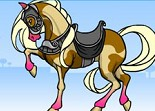 cheval, habillage, équitation, fille