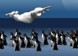 sport, yéti, pingouin, distance