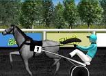 animaux, chevaux, course hippique, trot attelé, équitation, sport équestre
