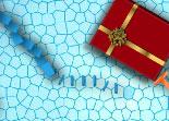 Père Noël, domino, adresse, réaction en chaîne, christmas