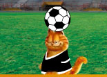 Garfield, football, sport, ballon, foot