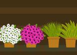 métier, fleur, gestion, boutique, fleuriste