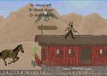 Far West, western, cowboy, tir, pistolet, revolver