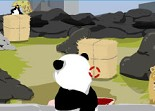 zoo, animaux, tir, panda, pingouin