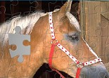 The Kidzgame Jigsaw Puzzles - Horse
