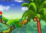 aventure, animaux, singe