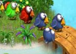 zuma, Angry Birds, adresse