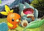 Pokémon, puzzle, observation