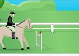 équitation, chevaux, cso, sport