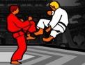 karaté, combat, arts martiaux, combat à mains nues, coup de pieds, poings