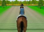 équitation, chevaux, sport, CSO, saut d'obstacle