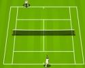 tennis, raquette, balle de tennis, service, smatch, smash, coup droit, revers, slice, passing short, coupé, cordage
