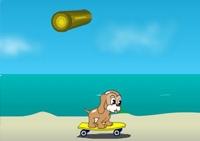 chien, skateboard, saut, planche à roulette