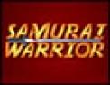 combat,  arcade,  guerrier, samourai, ninja, infiltration, tournoi