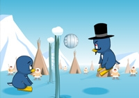 Volley, pingouins, banquise, balle, ballon, manchot